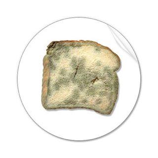 Stale_bread_sticker-p217377541770273142qjcl_400