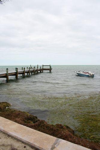 Boatblog4x6jpg